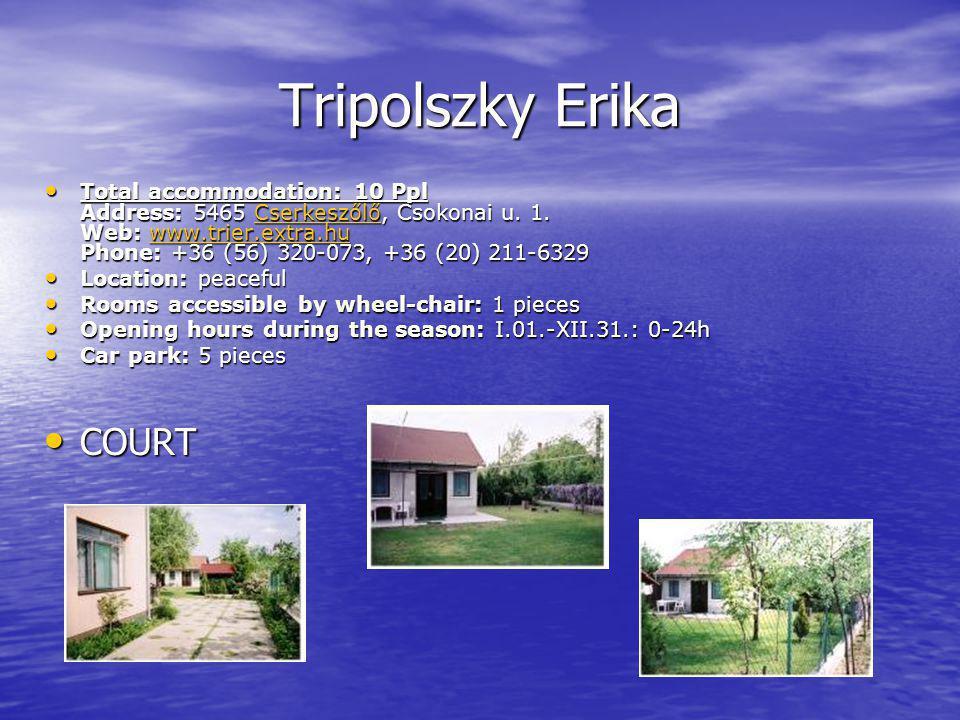 Tripolszky Erika COURT COURT Total accommodation: 10 Ppl Address: 5465 Cserkeszőlő, Csokonai u.