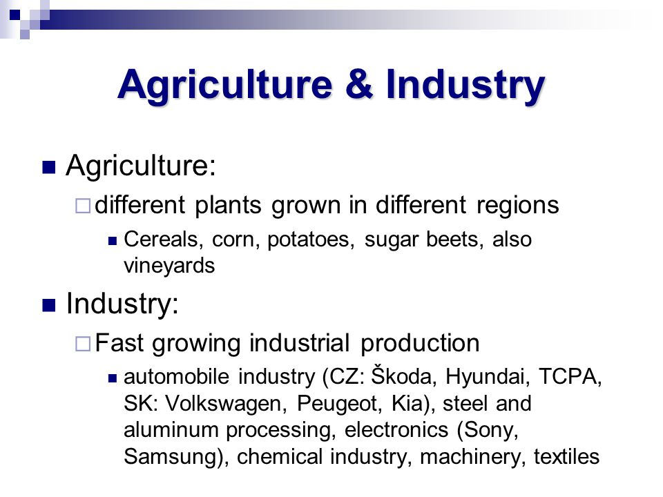 Agriculture & Industry Agriculture: different plants grown in different regions Cereals, corn, potatoes, sugar beets, also vineyards Industry: Fast gr