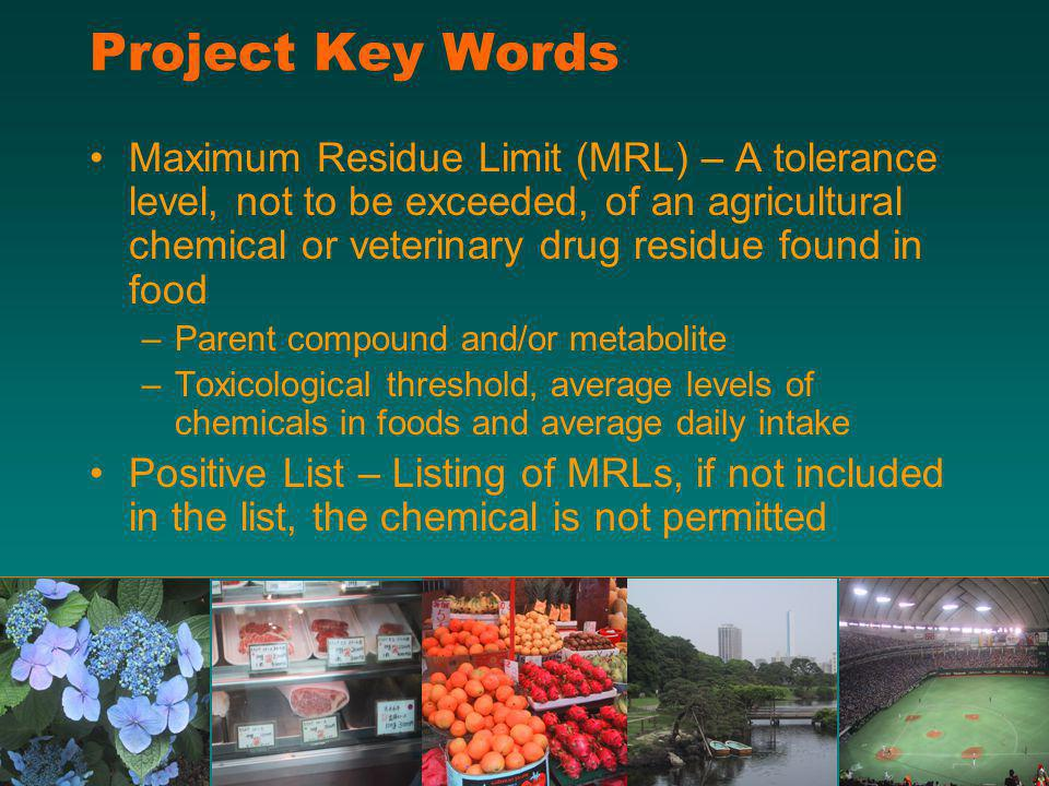 Project Key Words Maximum Residue Limit (MRL) – A tolerance level, not to be exceeded, of an agricultural chemical or veterinary drug residue found in food –Parent compound and/or metabolite –Toxicological threshold, average levels of chemicals in foods and average daily intake Positive List – Listing of MRLs, if not included in the list, the chemical is not permitted