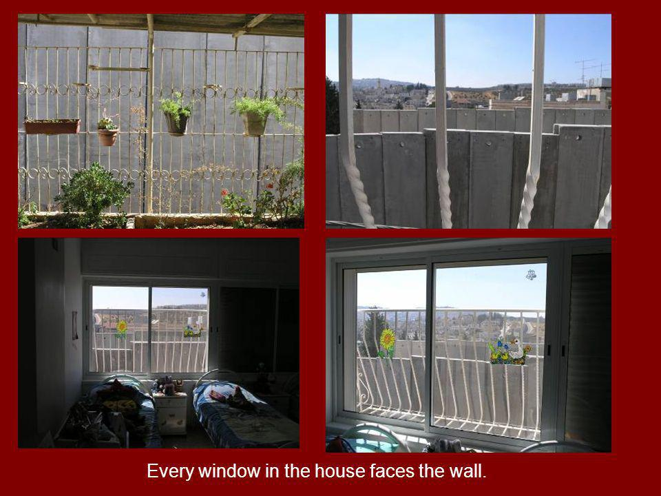 Every window in the house faces the wall.