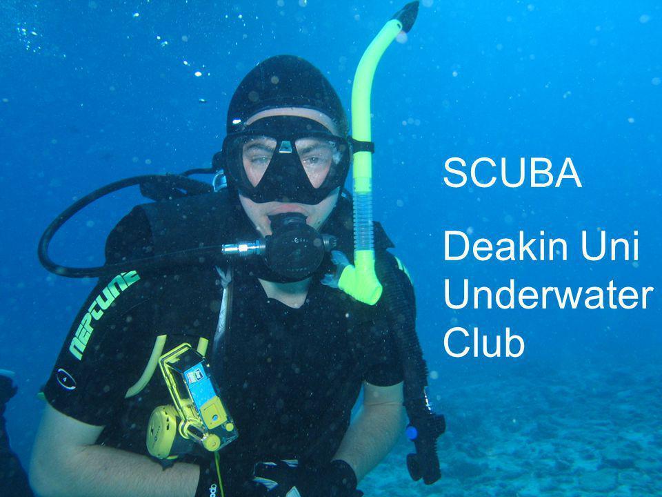 SCUBA Deakin Uni Underwater Club