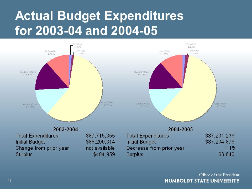 3 Actual Budget Expenditures for 2003-04 and 2004-05