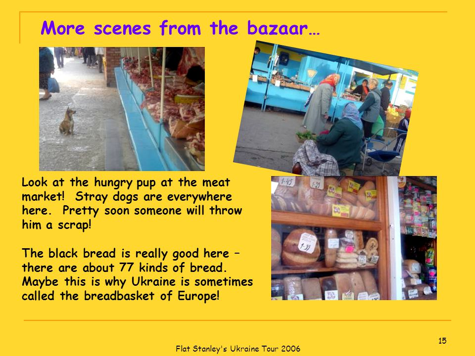 Flat Stanley s Ukraine Tour 2006 15 More scenes from the bazaar… Look at the hungry pup at the meat market.