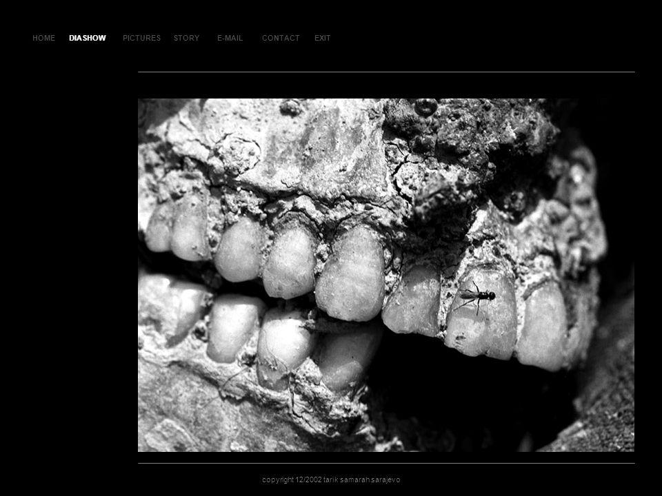 HOMEDIASHOWPICTURESE-MAILCONTACTEXIT copyright 12/2002 tarik samarah sarajevo STORY SL AJ D 5 DIASHOW