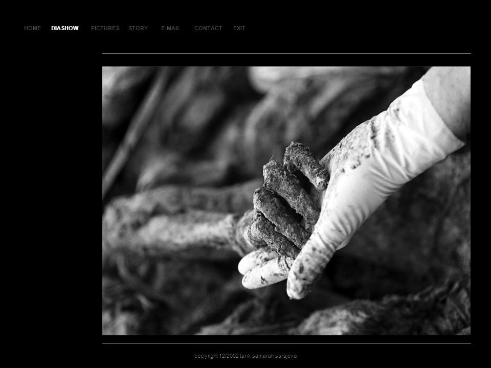 HOMEDIASHOWPICTURESE-MAILCONTACTEXIT copyright 12/2002 tarik samarah sarajevo STORY SL AJ D 9 DIASHOW