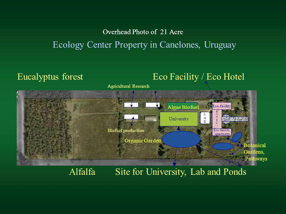 Overhead Photo of 21 Acre Ecology Center Property in Canelones, Uruguay Alfalfa Site for University, Lab and Ponds Eucalyptus forest Eco Facility / Ec