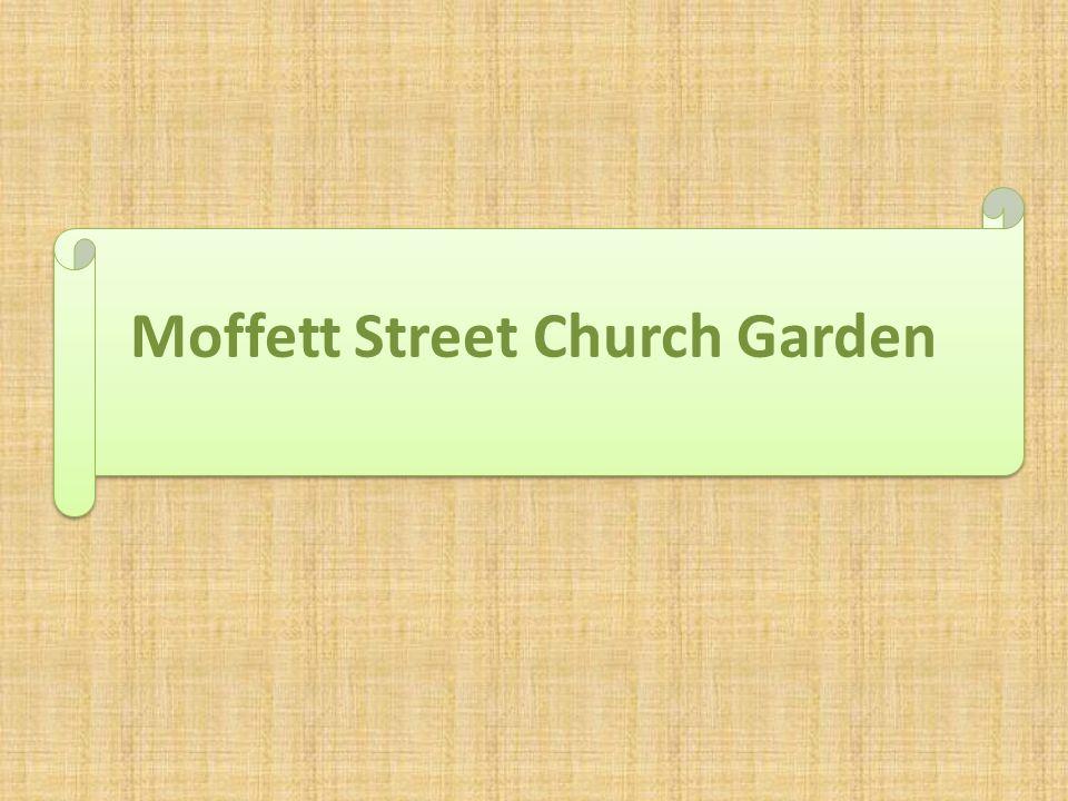Moffett Street Church Garden