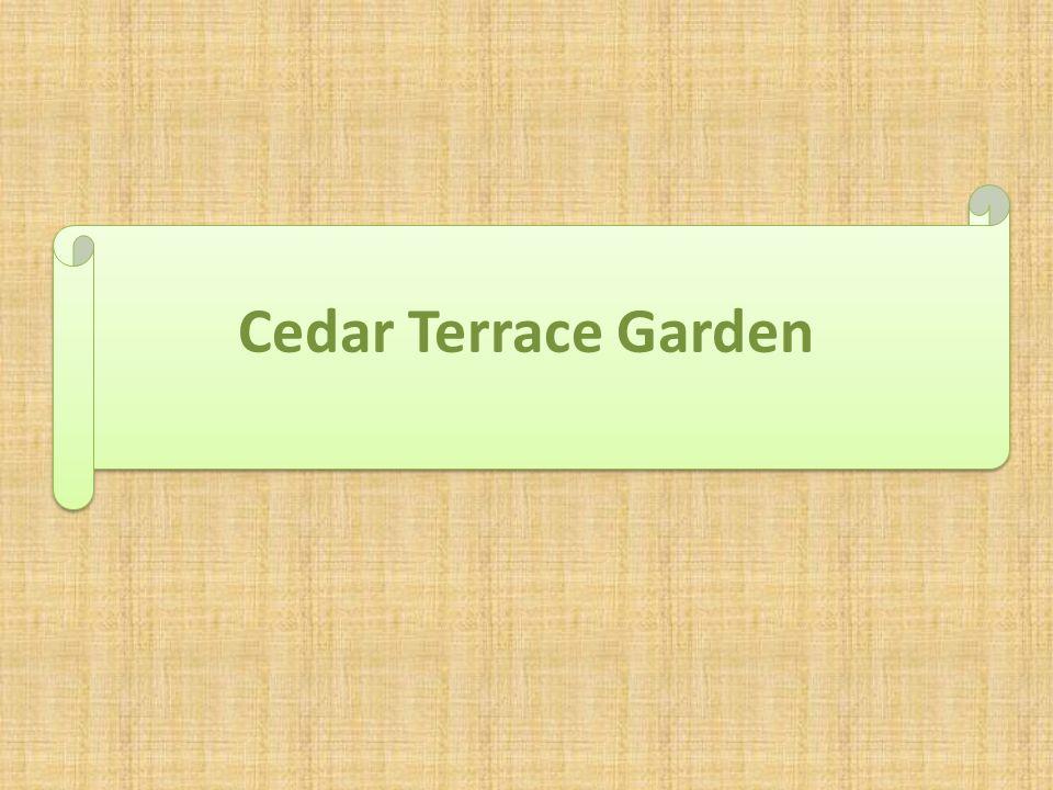 Cedar Terrace Garden