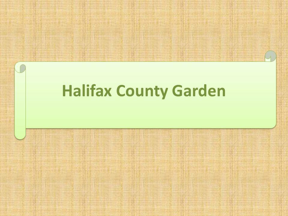 Halifax County Garden