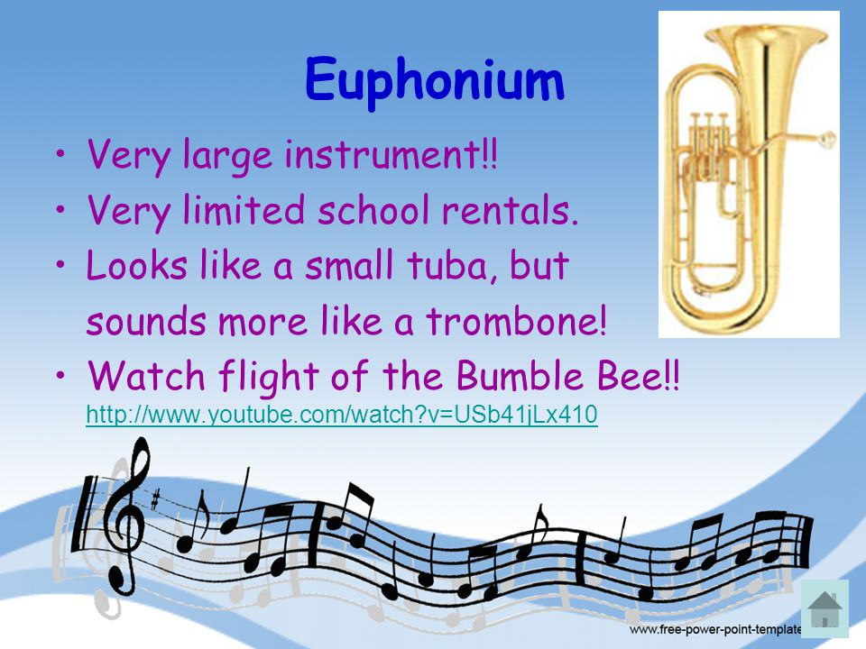Euphonium Very large instrument!! Very limited school rentals. Looks like a small tuba, but sounds more like a trombone! Watch flight of the Bumble Be
