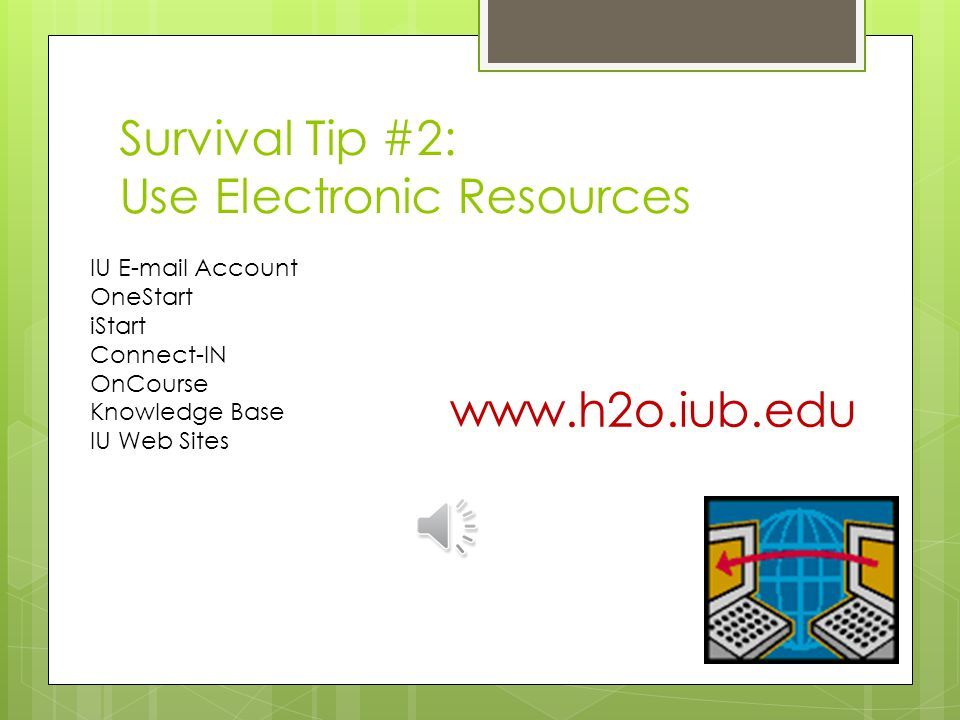Survival Tip #1: Ask for help! Office for International Services International Center Bursar Registrar Academic Department Housing Staff Library Staff