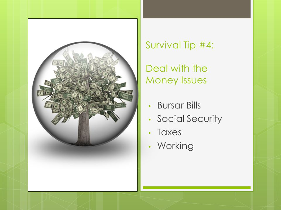Survival Tip #4: Deal with the Money Issues Bursar Bills Social Security Taxes Working