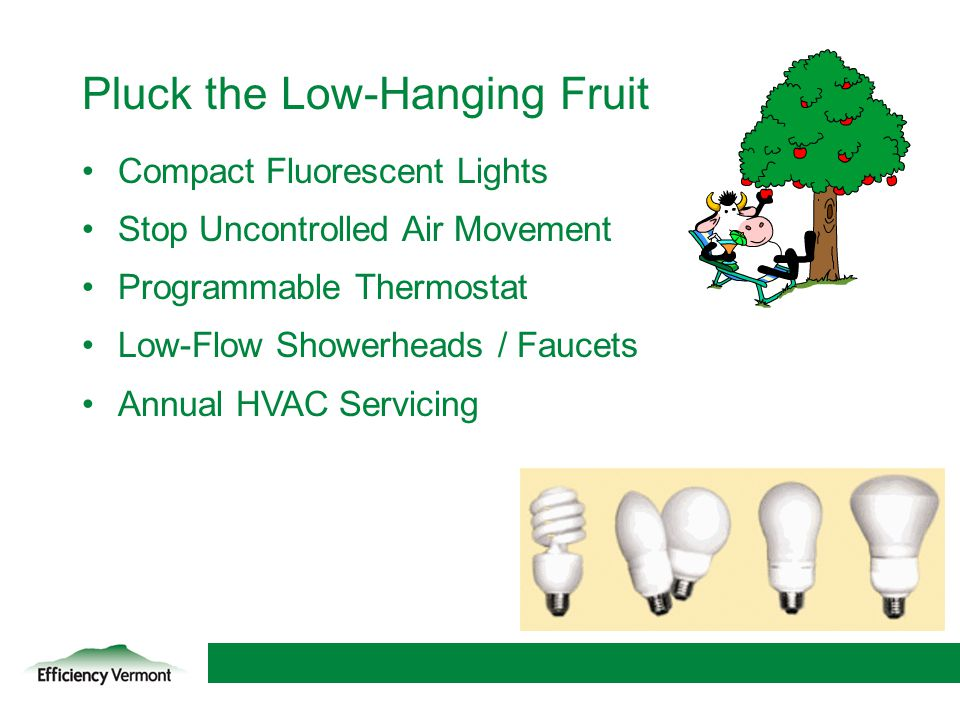 13 Pluck the Low-Hanging Fruit Compact Fluorescent Lights Stop Uncontrolled Air Movement Programmable Thermostat Low-Flow Showerheads / Faucets Annual