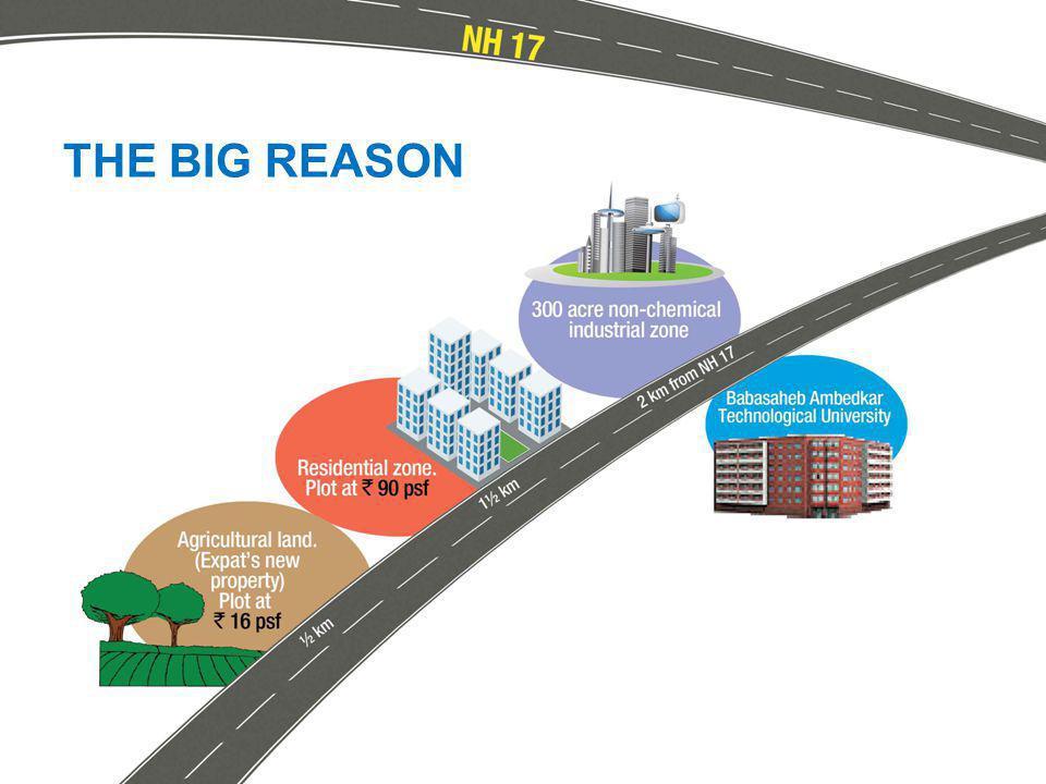 THE BIG REASON