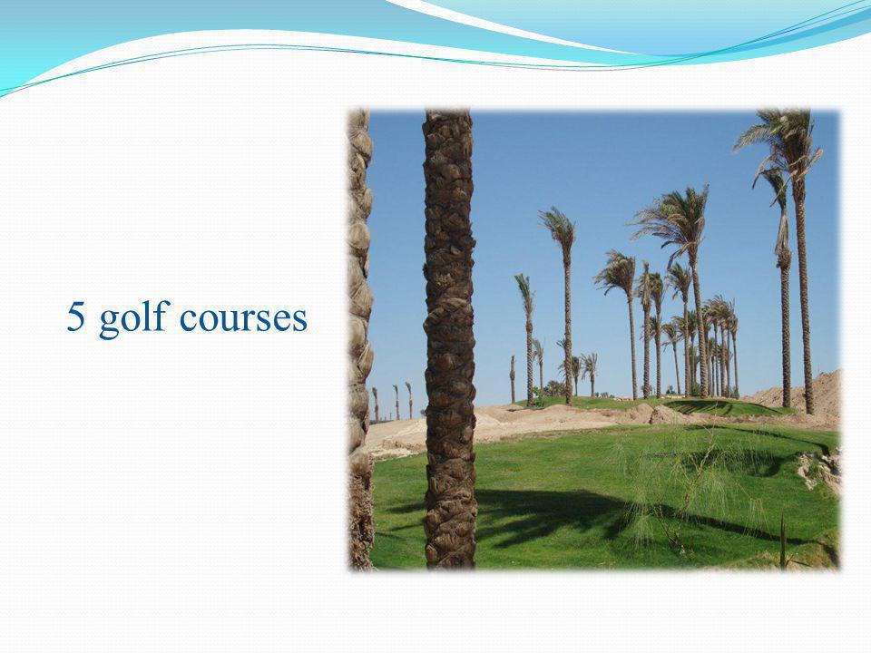 5 golf courses
