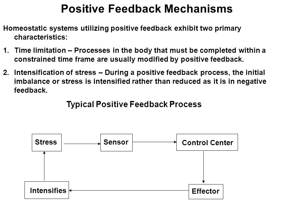 Positive Feedback Mechanisms Homeostatic systems utilizing positive feedback exhibit two primary characteristics: 1.Time limitation – Processes in the body that must be completed within a constrained time frame are usually modified by positive feedback.