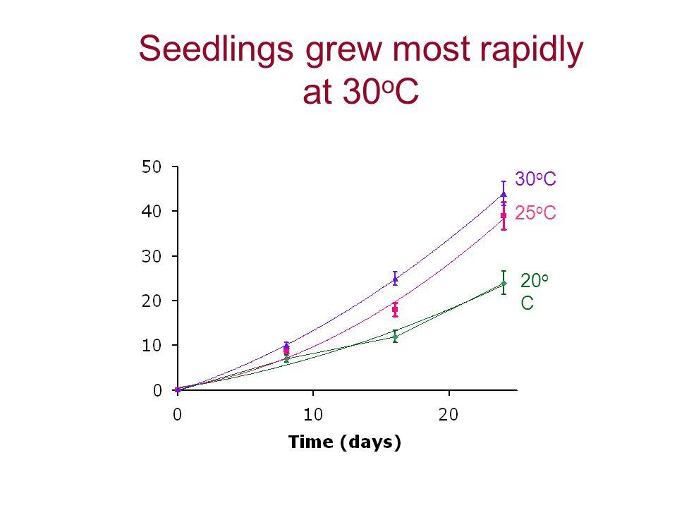 Seedlings grew most rapidly at 30 o C 20 o C 30 o C 25 o C