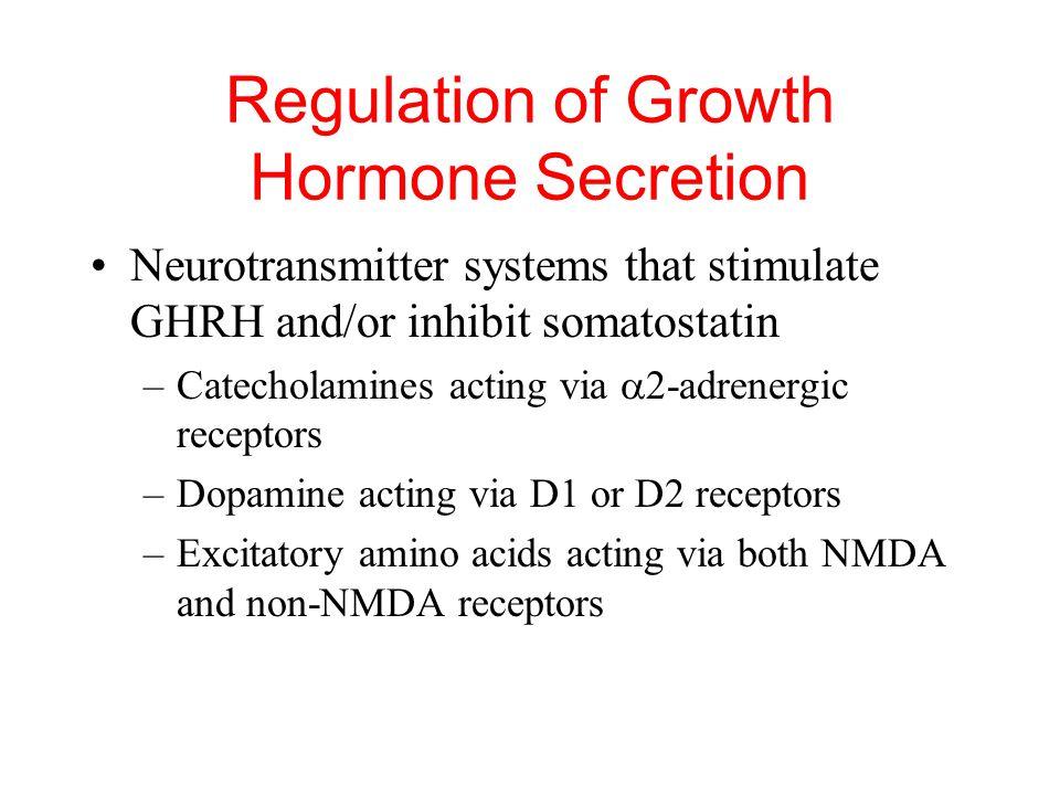 Regulation of Growth Hormone Secretion GH secretion controlled primarily by hypothalamic GHRH stimulation and somatostatin inhibition Neurotransmitter