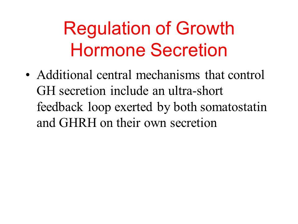 -adrenergic receptors stimulate somatostatin release and inhibit GH -adrenergic receptors inhibit hypothalamic release of GHRH Regulation of Growth Ho