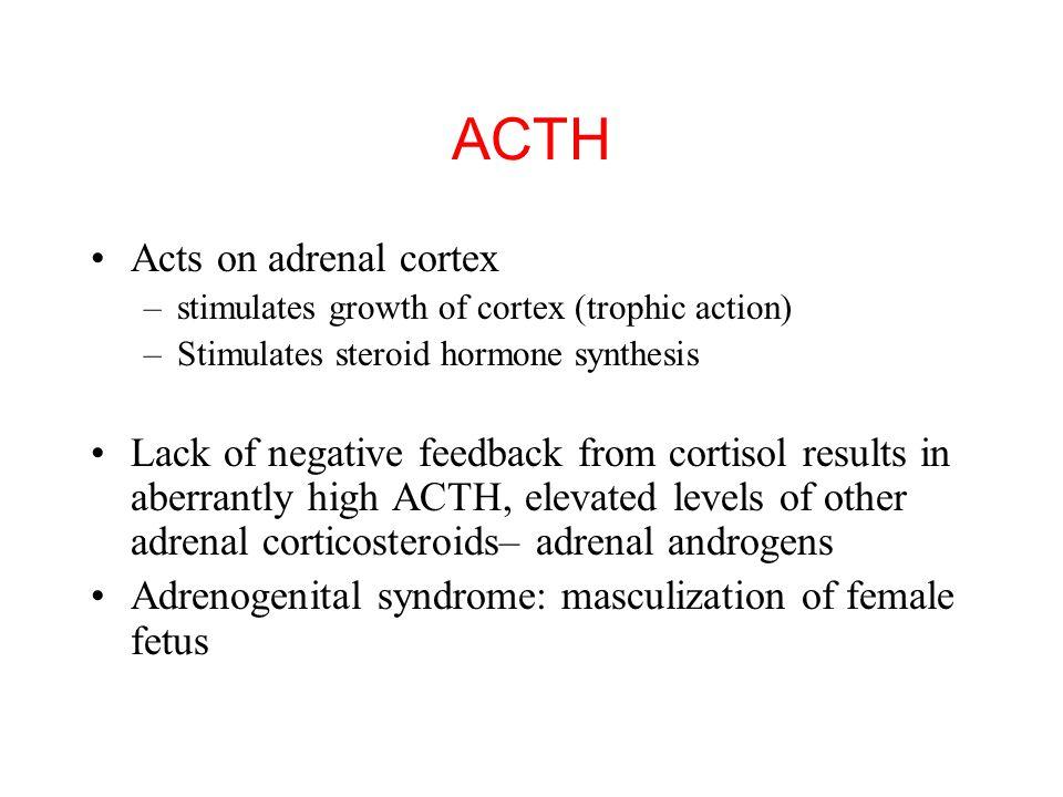 Regulation of ACTH