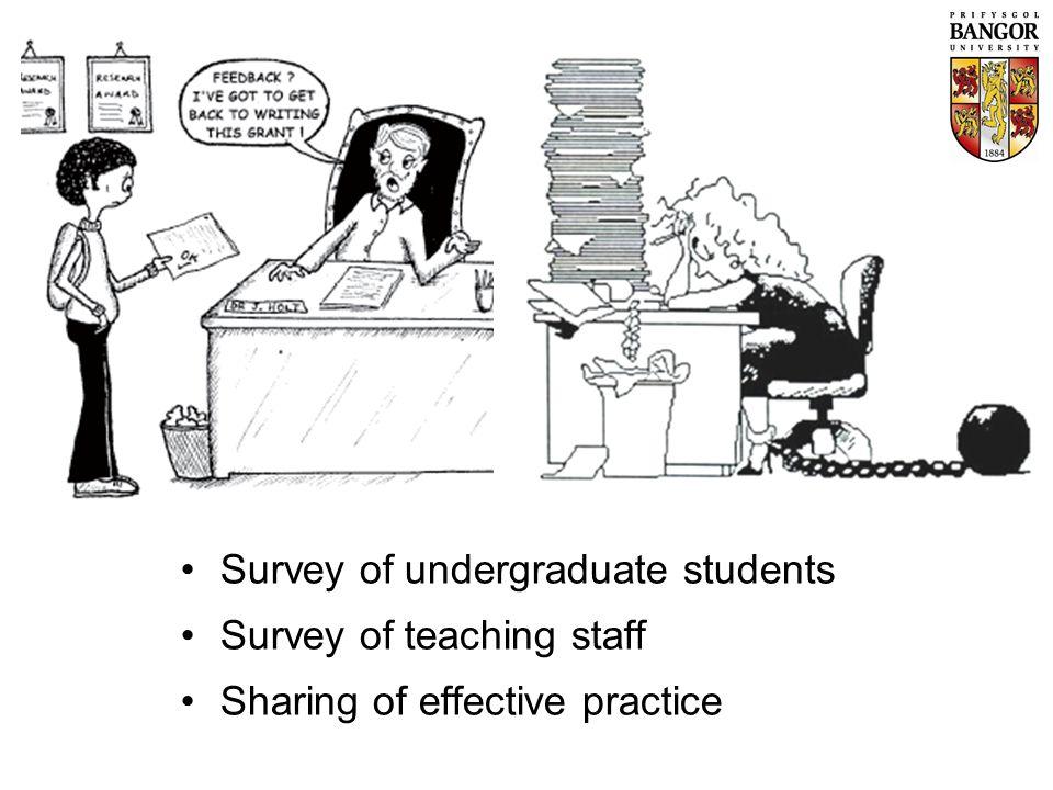 Survey of undergraduate students Survey of teaching staff Sharing of effective practice