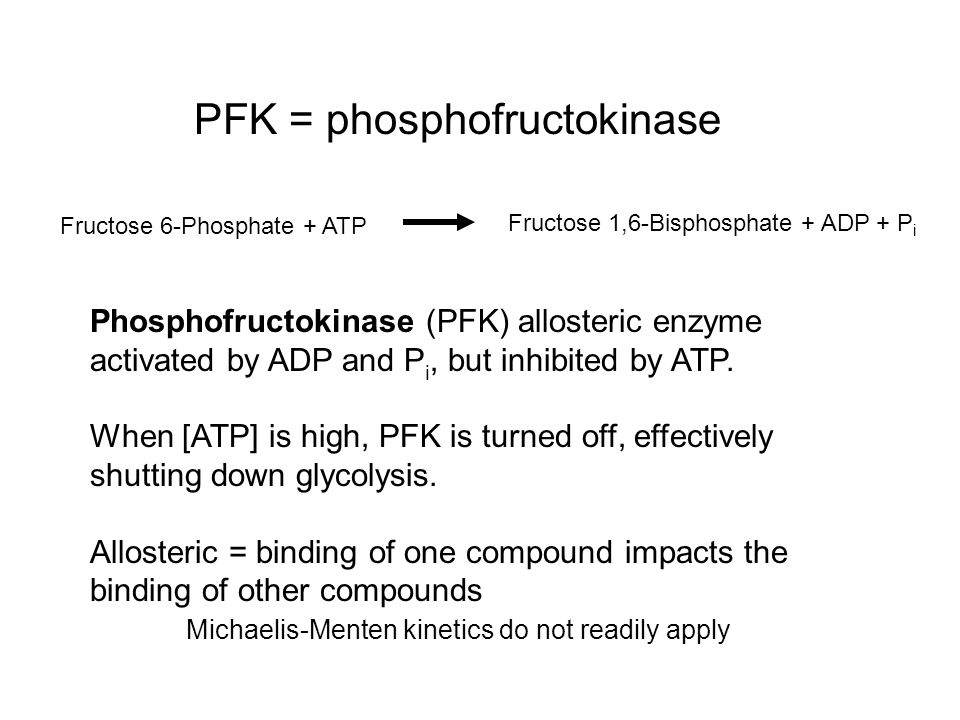 Fructose 6-Phosphate + ATP Fructose 1,6-Bisphosphate + ADP + P i PFK = phosphofructokinase Phosphofructokinase (PFK) allosteric enzyme activated by AD
