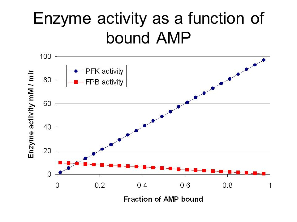 Enzyme activity as a function of bound AMP