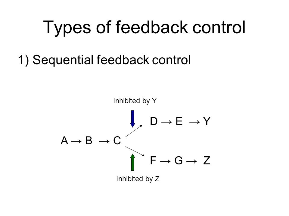 Types of feedback control 1) Sequential feedback control A B C D E Y F G Z Inhibited by Y Inhibited by Z