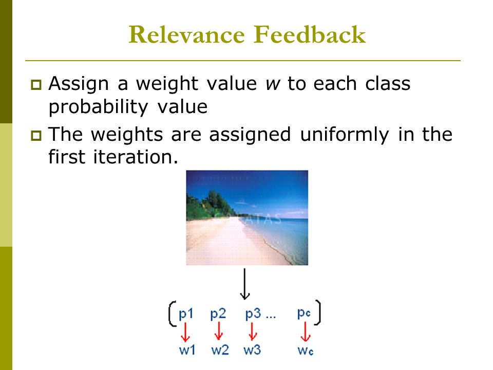 Image Retrieval With Relevant Feedback Hayati Cam & Ozge Cavus Relevance Feedback Assign a weight value w to each class probability value The weights