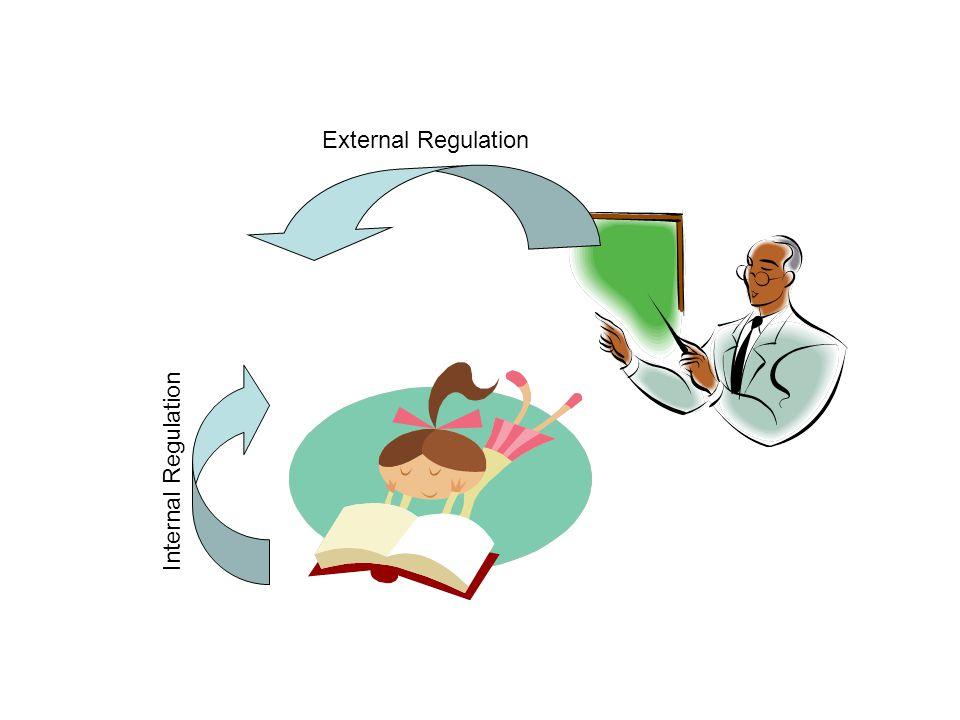 External Regulation Internal Regulation