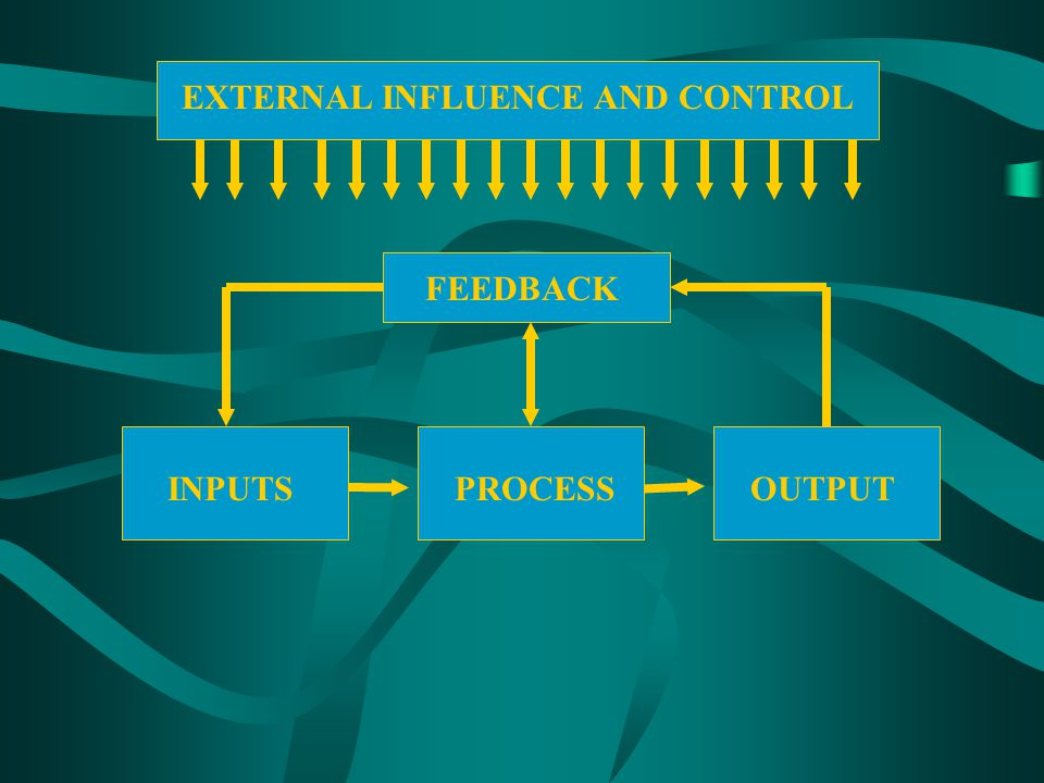 FEEDBACK INPUTSPROCESSOUTPUT EXTERNAL INFLUENCE AND CONTROL