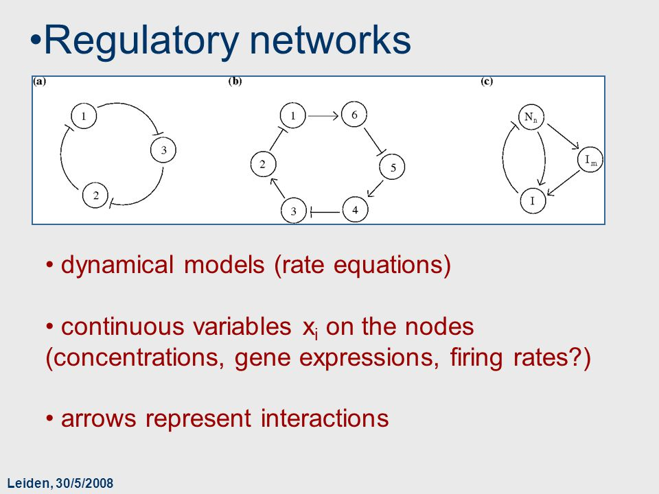 Leiden, 30/5/2008 Regulatory networks dynamical models (rate equations) continuous variables x i on the nodes (concentrations, gene expressions, firin