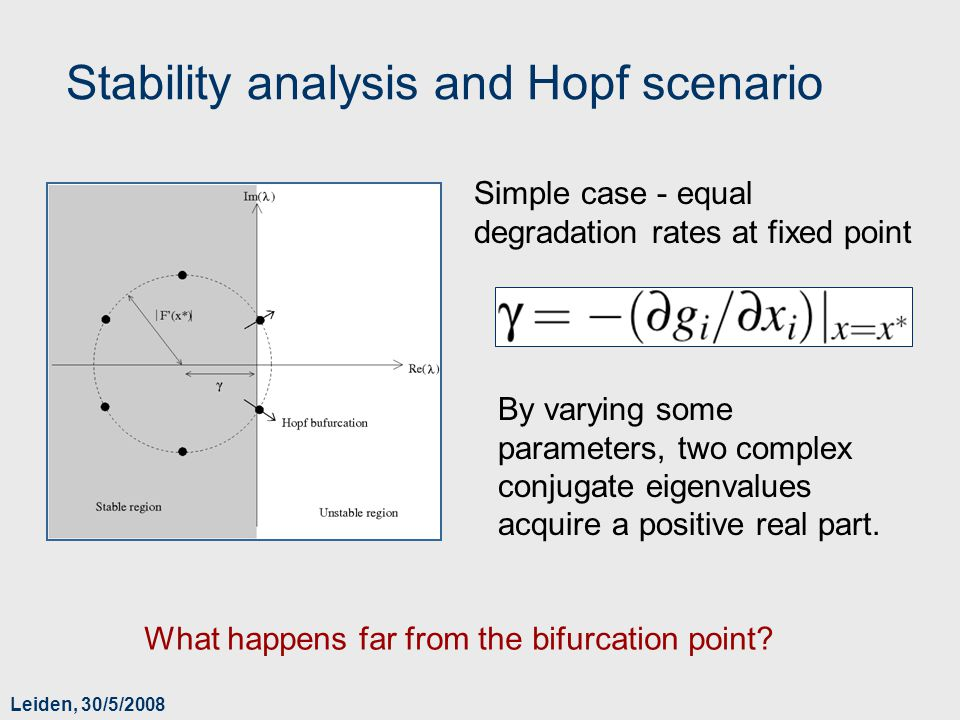 Leiden, 30/5/2008 Stability analysis and Hopf scenario What happens far from the bifurcation point? By varying some parameters, two complex conjugate