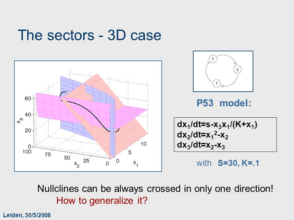 Leiden, 30/5/2008 The sectors - 3D case Nullclines can be always crossed in only one direction! How to generalize it? dx 1 /dt=s-x 3 x 1 /(K+x 1 ) dx