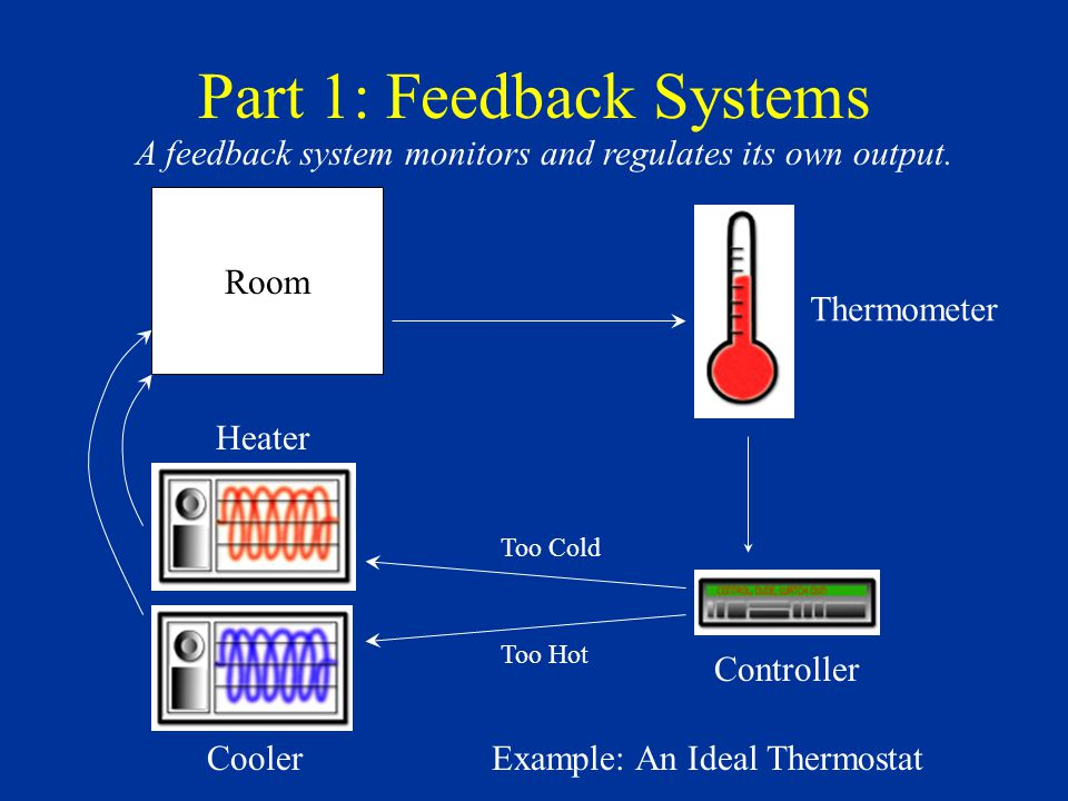 The Thermostat System is Negative Feedback Reduces the difference between the actual temperature and the target temperature.