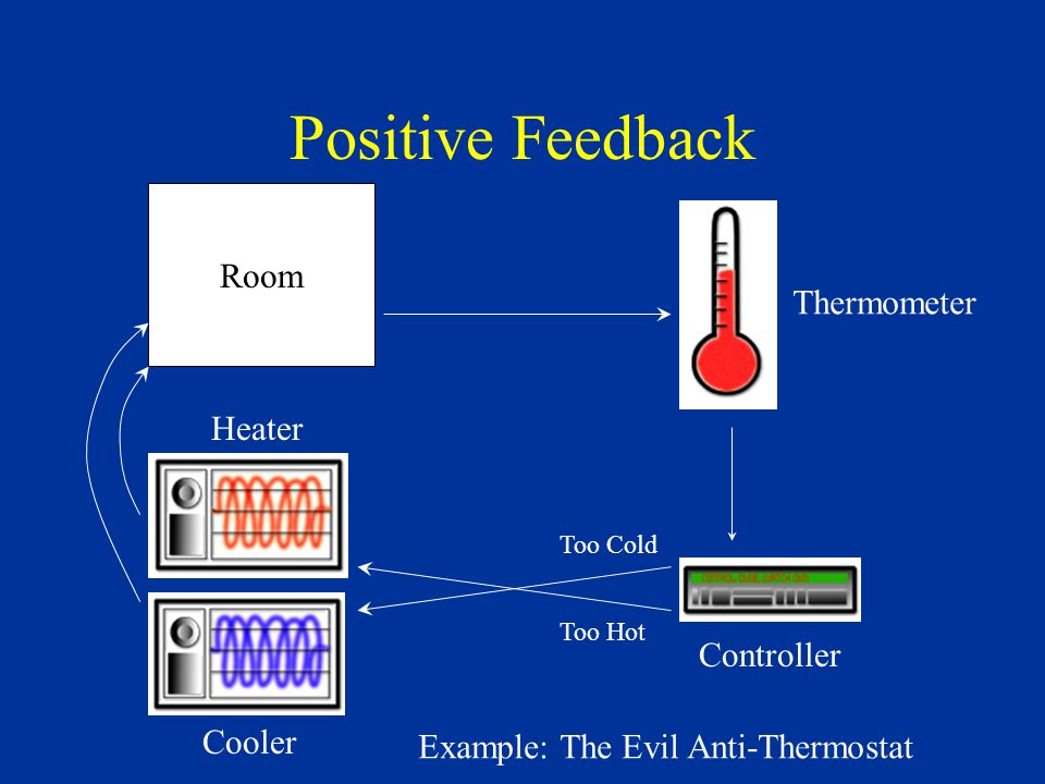 Positive Feedback Systems: Drive their output away from the target value.