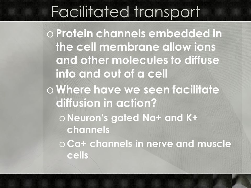 Facilitated transport o Protein channels embedded in the cell membrane allow ions and other molecules to diffuse into and out of a cell o Where have we seen facilitate diffusion in action.