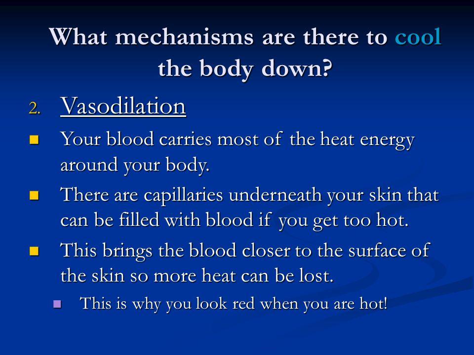 Sweating The skin