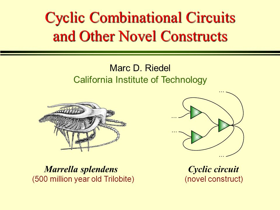 Cyclic Combinational Circuits and Other Novel Constructs Marc D.