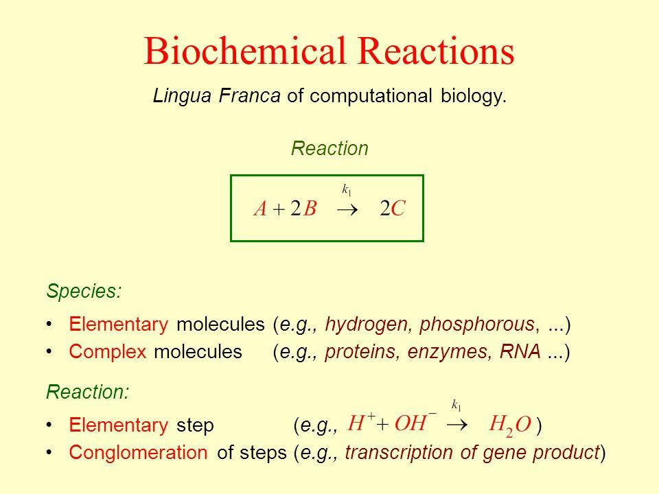 Biochemical Reactions Lingua Franca of computational biology. Elementary molecules (e.g., hydrogen, phosphorous,...) Complex molecules (e.g., proteins