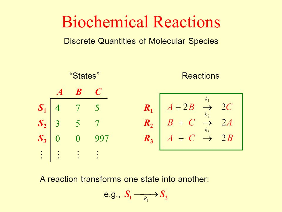 Discrete Quantities of Molecular Species Reactions R1R1 R2R2 R3R3 States ABC 475 357 00997 S1S1 S2S2 S3S3 Biochemical Reactions A reaction transforms one state into another: e.g.,