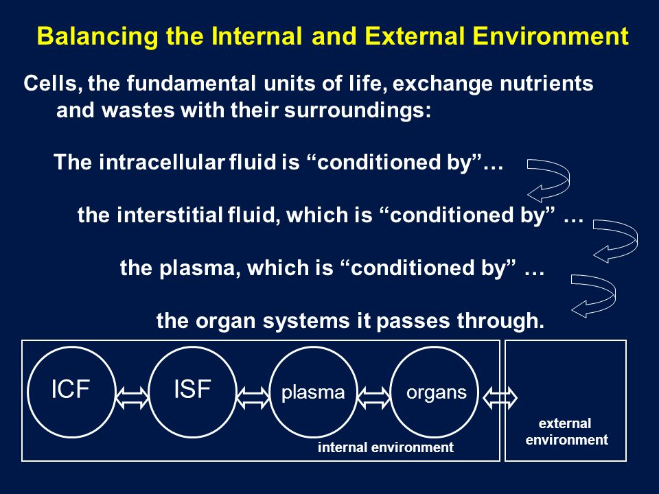 Cells, the fundamental units of life, exchange nutrients and wastes with their surroundings: The intracellular fluid is conditioned by… the interstiti