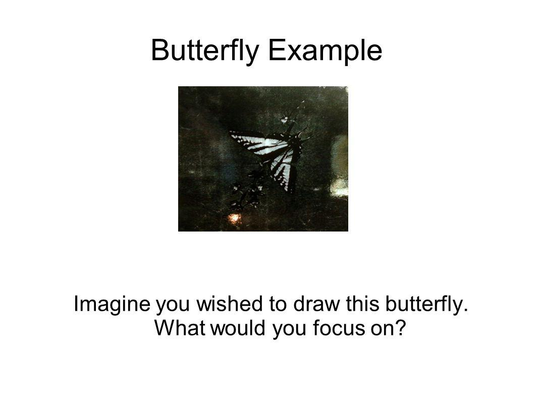 Butterfly Example Imagine you wished to draw this butterfly. What would you focus on?