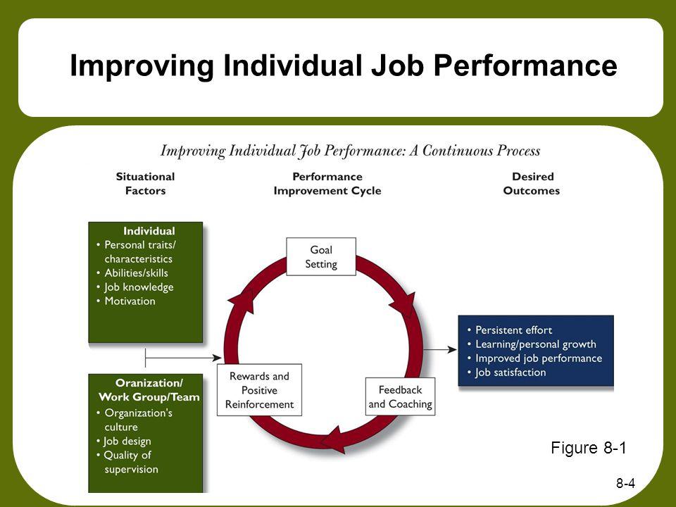 8-4 Improving Individual Job Performance Figure 8-1