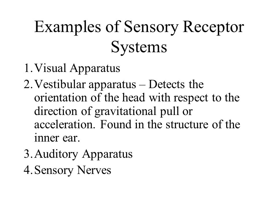 Examples of Sensory Receptor Systems 1.Visual Apparatus 2.Vestibular apparatus – Detects the orientation of the head with respect to the direction of