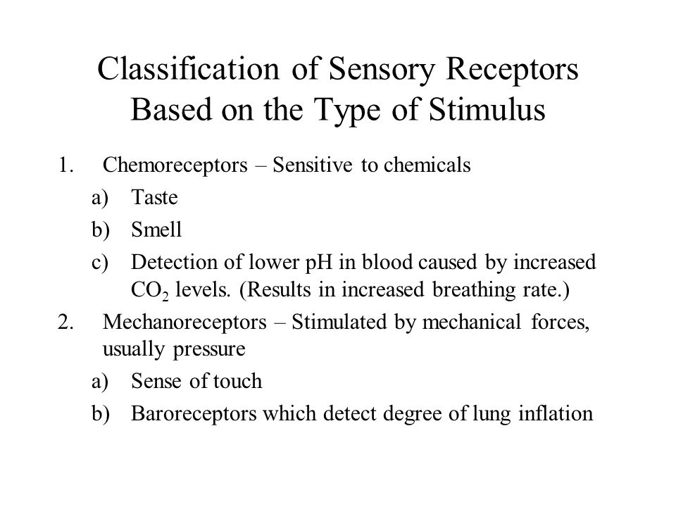 Classification of Sensory Receptors Based on the Type of Stimulus 1.Chemoreceptors – Sensitive to chemicals a)Taste b)Smell c)Detection of lower pH in