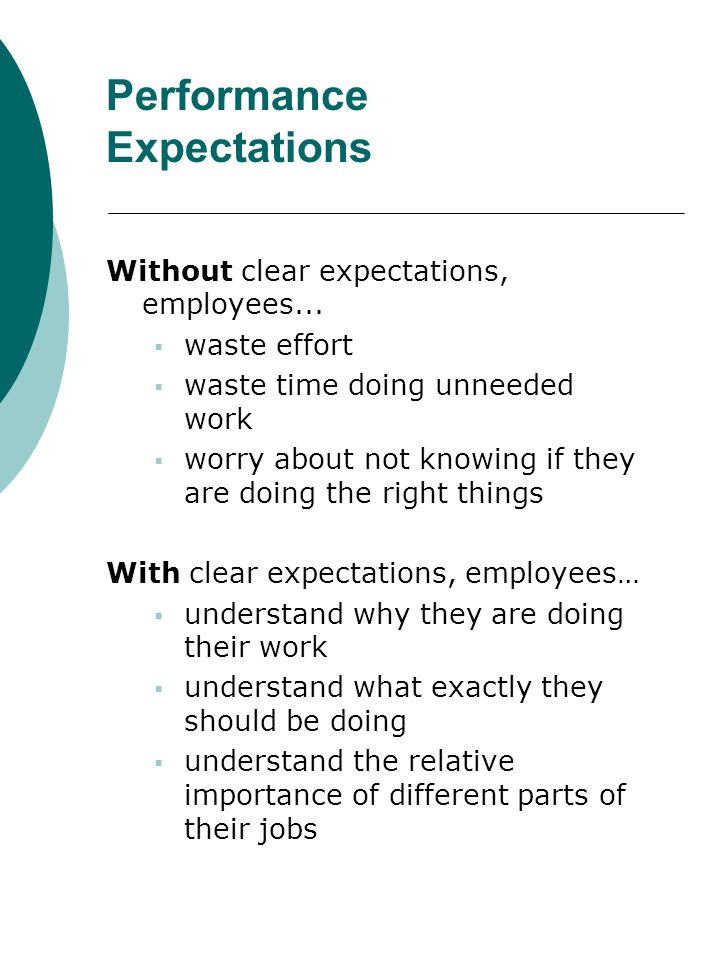 Performance Expectations Without clear expectations, employees... waste effort waste time doing unneeded work worry about not knowing if they are doin