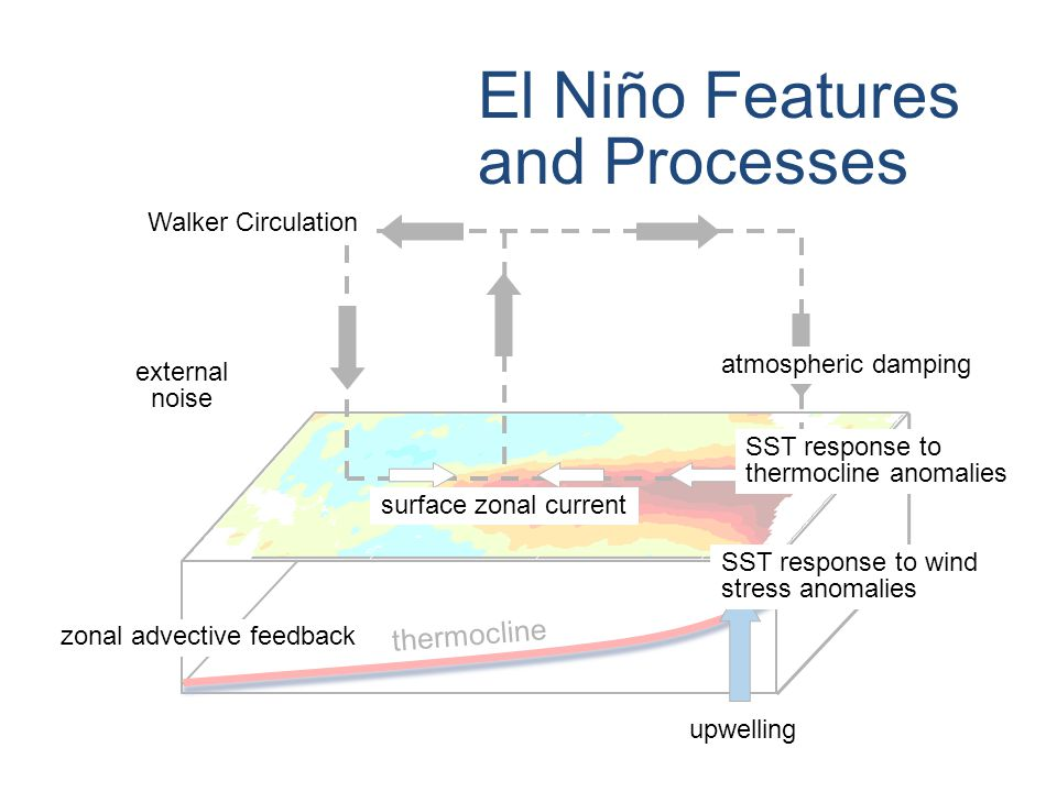thermocline upwelling © Crown copyright Met Office El Niño Features and Processes atmospheric damping SST response to thermocline anomalies SST response to wind stress anomalies upwelling surface zonal current zonal advective feedback external noise Walker Circulation
