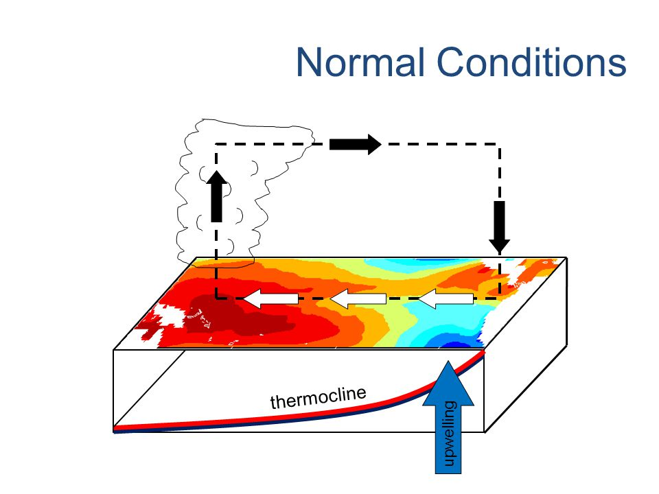 © Crown copyright Met Office Climate Change thermocline upwelling