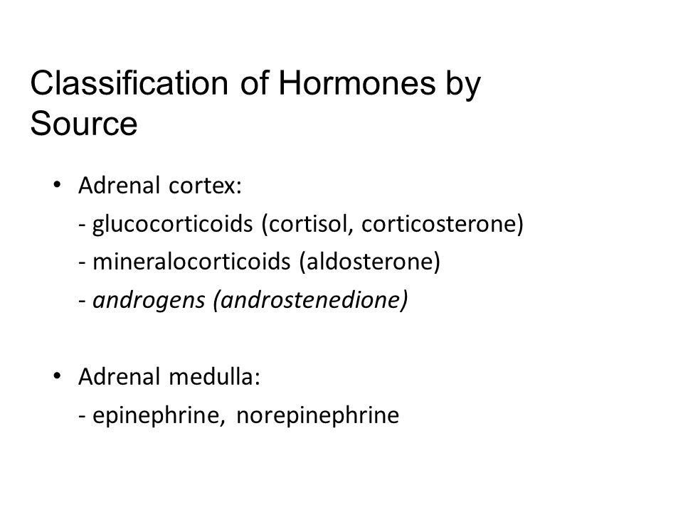 Adrenal cortex: - glucocorticoids (cortisol, corticosterone) - mineralocorticoids (aldosterone) - androgens (androstenedione) Adrenal medulla: - epine